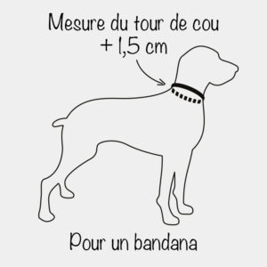 Mesurer le tour de cou du chien pour un bandana