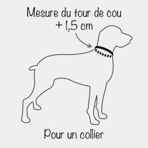 Mesurer le tour de cou du chien pour un collier