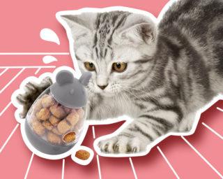 Jouet distributeur de croquettes pour chat